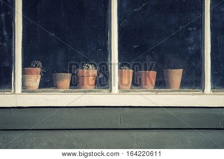 Dying Plants On Pots In Window Of Old Vintage Retro Potting Shed