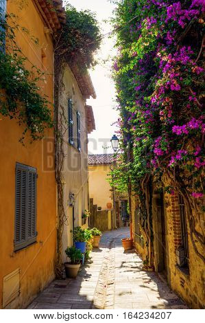 Picturesque Alley In Grimaud, France