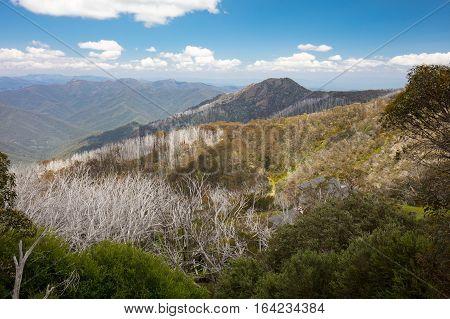 Mount Buller landscape over Little Buller Spur on a hot summer's day in Victoria, Australia