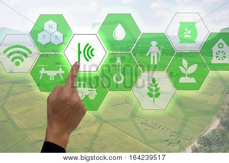 Internet of things(agriculture concept),smart farming,industrial agriculture.Farmer point hand to use augmented reality technology to control ,monitor and management in the field