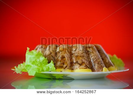 jellied meat with vegetables on a red background