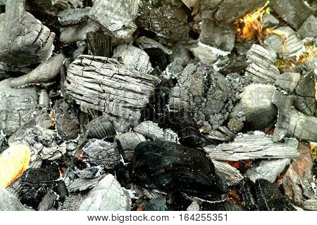 Extinct black white coals after party bonfire.