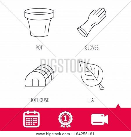 Achievement and video cam signs. Leaf, scissors and pot icons. Hothouse linear sign. Calendar icon. Vector