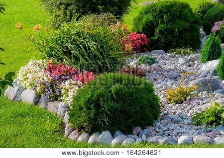 Beautiful flower garden with blooming seasonal flowers.