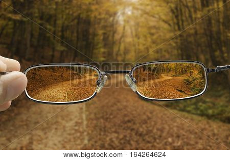 seeing forest path in autumn through glasses that improve vision