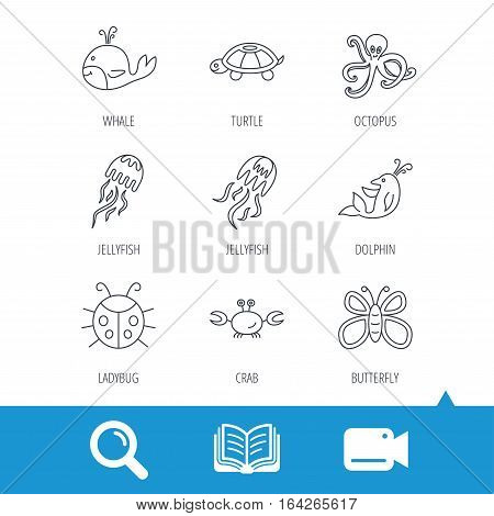 Octopus, turtle and dolphin icons. Jellyfish, whale and ladybug linear signs. Crab, butterfly flat line icons. Video cam, book and magnifier search icons. Vector