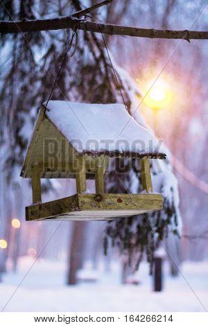 bird feeder, winter forest in the evening. Snow.