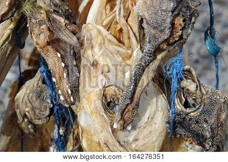Classic Food in Scandinavia - Stockfish in Iceland