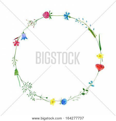 Wreath with bluebell,herbs,poppy,tansy,clover floral.Garland with meadow herbs.Watercolor hand drawn illustration.