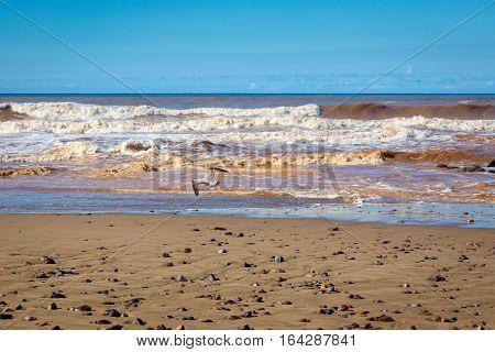 Coast In Sidi Ifni, Morocco