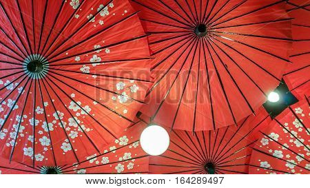Umbrellas with sakura motifs, hanging upside down from ceiling acting as light shades and decor.