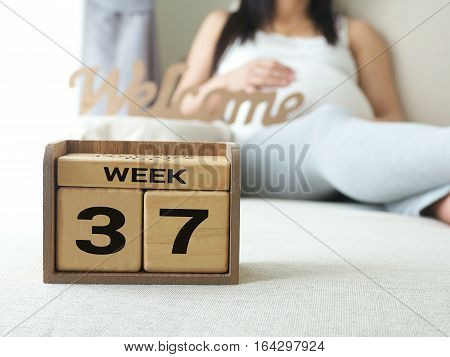 Calendar with weeks 37 of pregnant with pregnancy woman background. Maternity concept. Expecting an upcoming baby. Due date countdown.