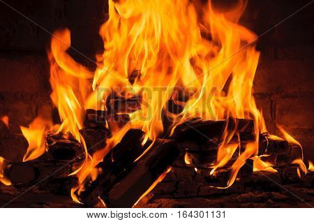 burning logs in the fireplace. burning log and fire