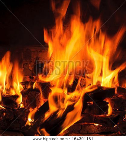 flames in the fireplace. burning log and fire