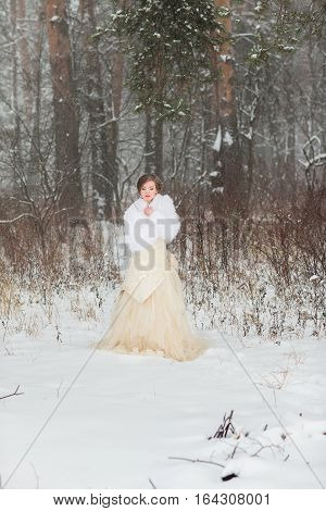 Winter wedding portrait. Portrait of beautiful winer bride.