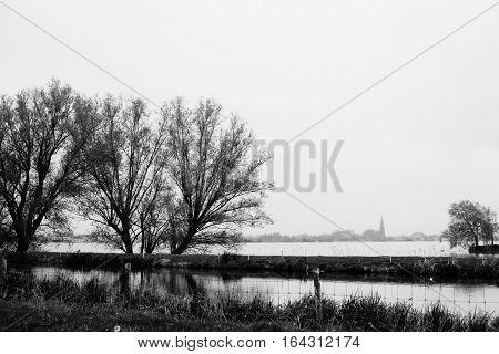 Two trees on Lake Langeraarsche Plassen with church on background Nehterlands