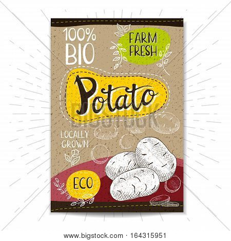 Colorful label in sketch style, food, spices, cardboard textured background. Popato. Vegetables. Bio, eco, farm, fresh. locally grown. Hand drawn vector illustration.