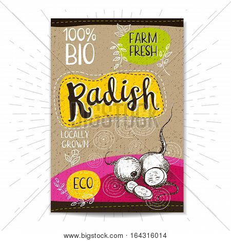 Colorful label in sketch style, food, spices, cardboard textured background. Radish. Vegetables. Bio, eco, farm, fresh. locally grown. Hand drawn vector illustration.