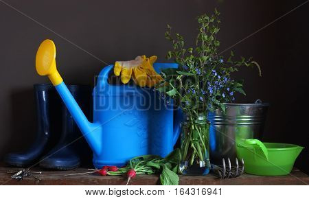 Country still life. Set of garden tools on the table: watering scratchy bucket rubber boots and gloves on the table. Work in the garden the beginning of the season.