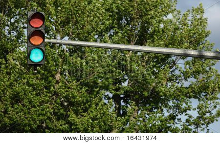 Traffic lights - green light is on (against lovely tree greenery)