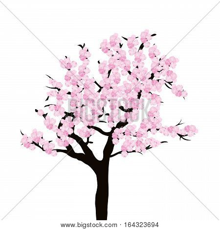 Illustration of cherry tree isolated on white background
