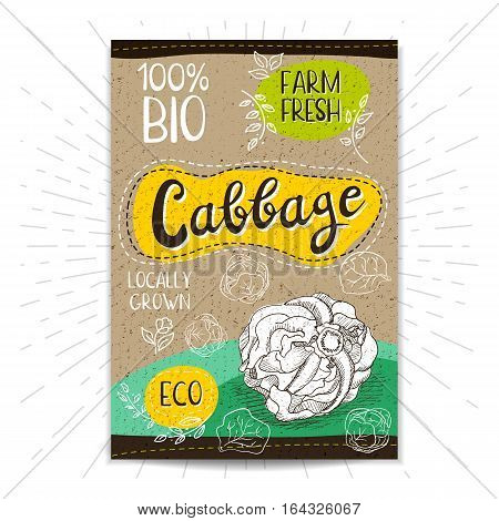 Colorful label in sketch style, food, spices, cardboard textured background. Cabbage Vegetables. Bio, eco, farm, fresh. locally grown. Hand drawn vector illustration