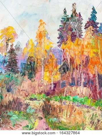 rural landscape, the  mixed woods in fall
