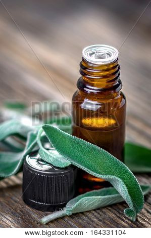 Sage Essential Oil And Fresh Sage