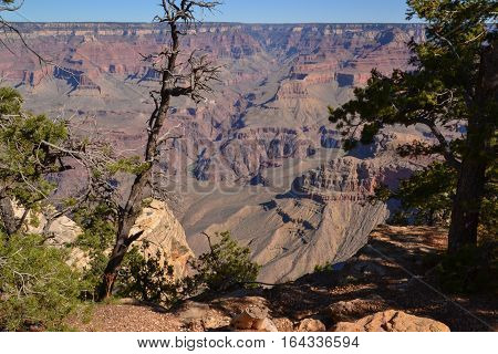 A view of the Grand Canyon's sheer drop-off into an abyss filled with cliff-edged rock stairs.