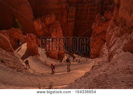 A windy path takes hikers down to and around Bryce Canyon's hoodoos.