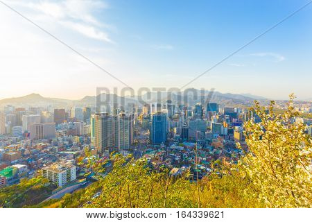 Seoul Downtown High View Cityscape Buildings