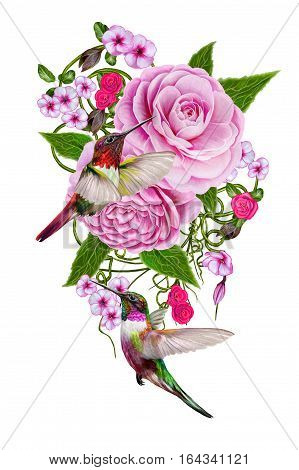 Flower composition. Bouquet of tender pink rose camellia branches leaves small bright flowers hummingbirds birds in flight. Isolated on white background.