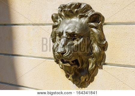 Decorative plaster bas-relief on the wall at the head of a lion