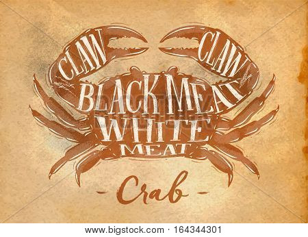 Poster crab cutting scheme lettering claw black meat white meat in retro style drawing on craft paper background