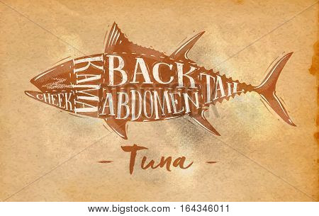 Poster tuna cutting scheme lettering cheek kama abdomen back tail in retro style drawing on craft paper paper background