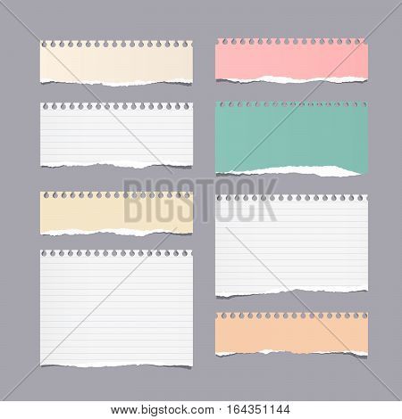 Pieces of ripped different size colorful note, notebook, copybook paper sheets stuck on gray background.