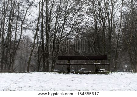 Bench Empty Seat In Wood Trees Winter And Fog