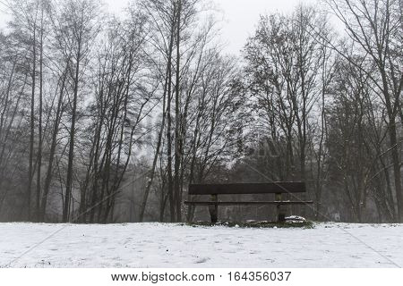 Bench Empty Seat In Wood Trees Winter And Fog 2