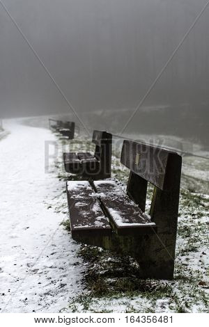 Bench Empty Seat In Wood Trees Winter And Fog 8