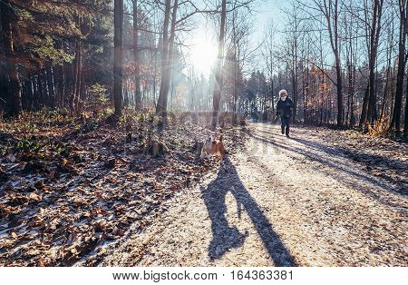 Woman walks active with dog in frozen park