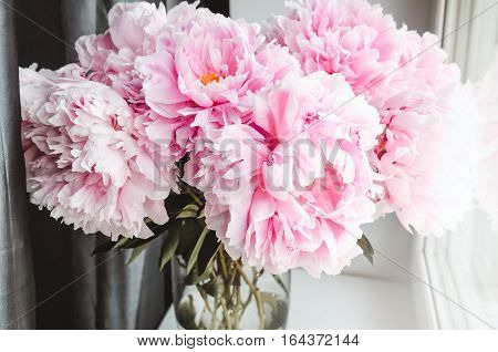 Beautiful bouquet of pink peonies peony roses flowers in vase on white window sill pastel color background. Spring or summer lovely nosegay. Fresh floral home decor. Trend pink color. Text copy space
