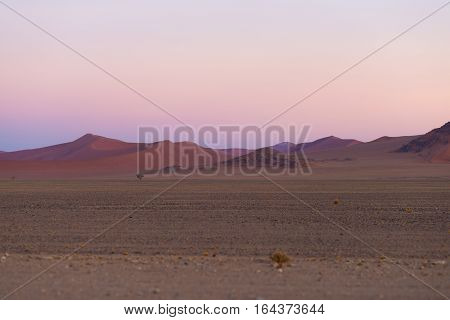 Colorful Sunset Over The Namib Desert, Namibia, Africa. Scenic Sand Dunes In Backlight In The Namib