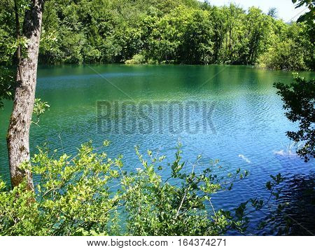 Colorful and vibrant landscape of lake shore. Tranquil landscape useful as background. Lower lakes canyon.  Plitvice lakes national park Croatia
