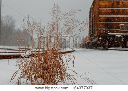Cargo railroad industry in winter. Railway carriage transport still storage. Train freight. Freight train on the branch railway terminal. Rail transportation in winter.