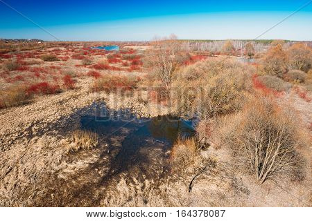 Spills Of River In Spring Season In Belarus. Sunny Spring Day. Belarusian Beautiful Landscape. Yellow Dry Grass Under Blue Sunny Sky.