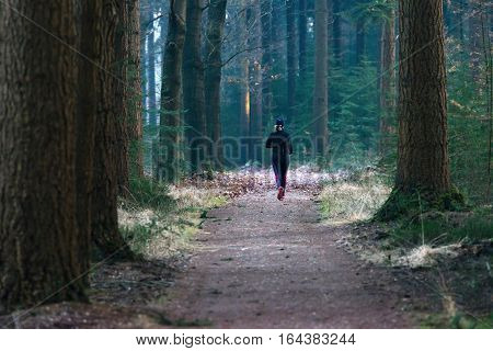 Woman Running On Path In Winter Pine Forest. Rear View.