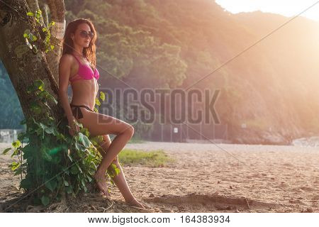 Sexy slim young female model wearing bikini and sunglasses posing leaning against tree trunk in green mountainous area