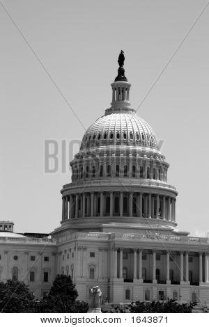 The U.S Capital,
