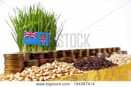 Fiji Flag Waving With Stack Of Money Coins And Piles Of Wheat And Rice Seeds