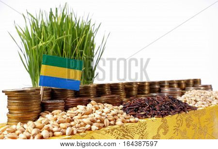 Gabon Flag Waving With Stack Of Money Coins And Piles Of Wheat And Rice Seeds
